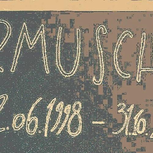 Chiude il Jarmusch Club a Caserta, gli ultimi concerti