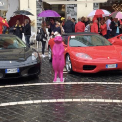 V Raduno Ferrari. Laura Catone Cat1/one