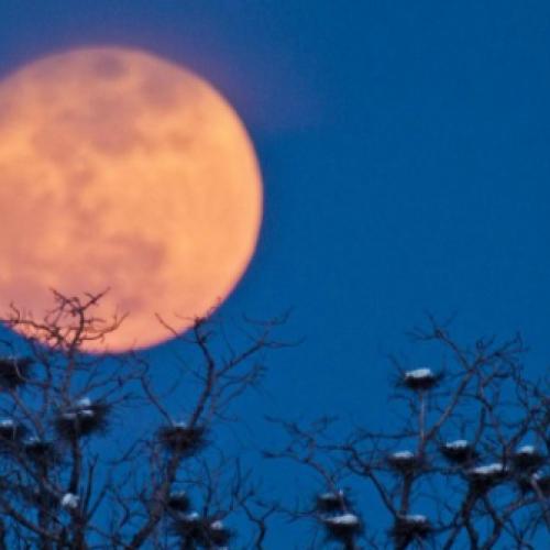 """La notte della """"superluna"""". Uno spettacolo da non perdere"""