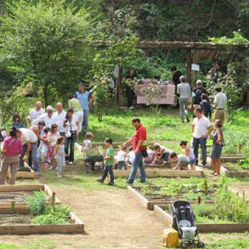 La speranza va seminata, alla Jean Monnet progetto sul verde