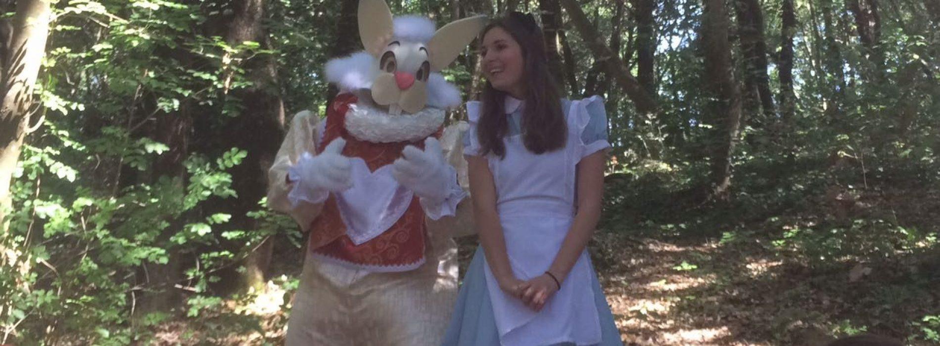 Alice nel bosco di San Silvestro, a passeggio con la Mansarda