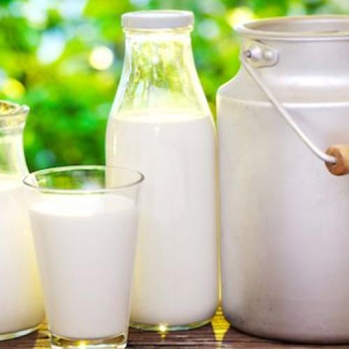 Giornata mondiale del latte, Città della Scienza diventa bianca