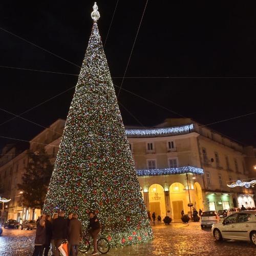 Natale a Caserta, si accendono le mille luci del grande albero