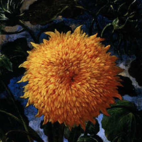 C'è aria di primavera, si apre la caccia ai fiori… dentro i musei