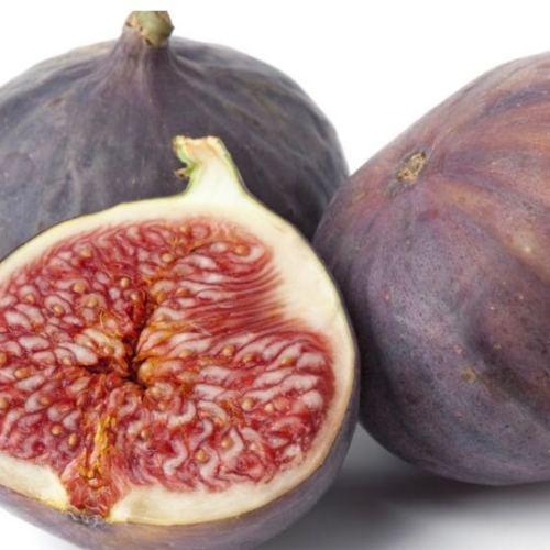 Il fico di San Pietro, un dolce fiore da gustare come un frutto