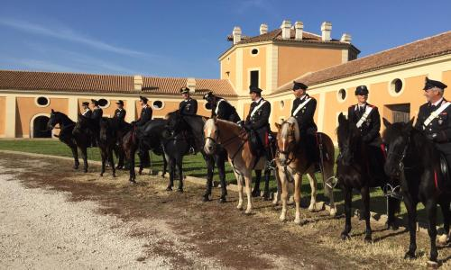 La mossa del cavallo, a Carditello si rivive la storia borbonica