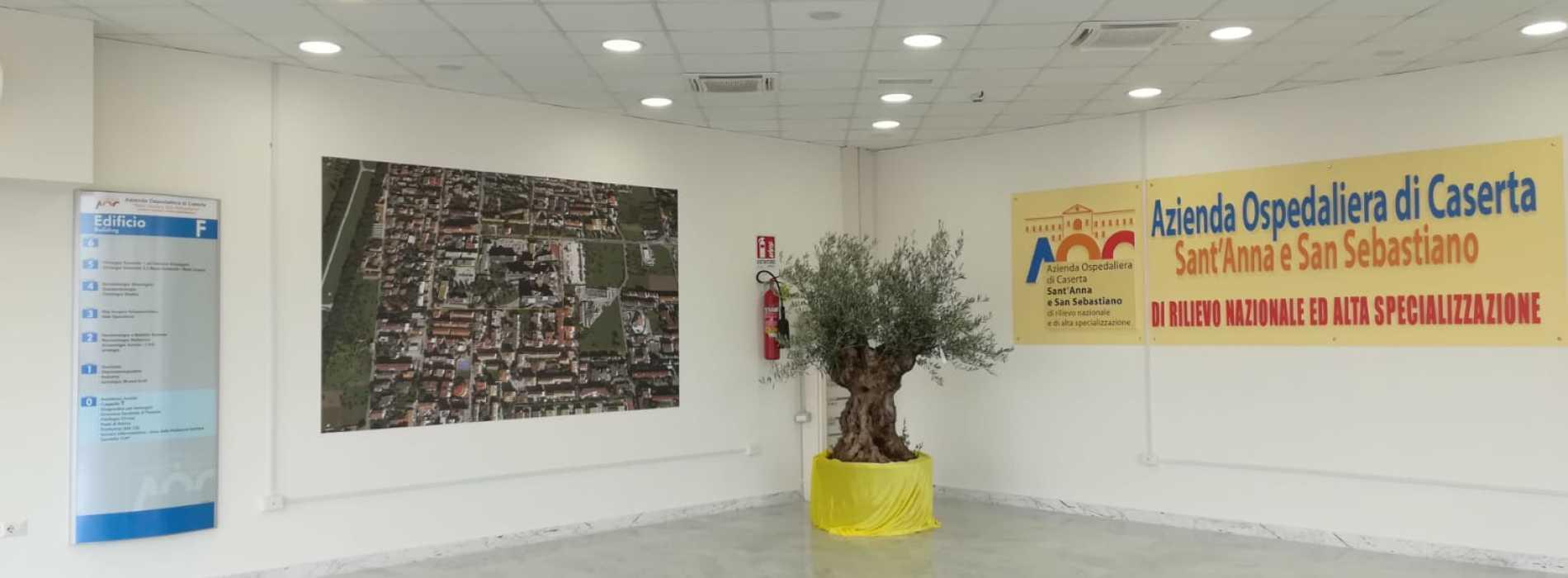 Prevenzione senologica, l'Ospedale di Caserta è in prima linea