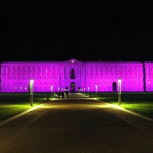 Il colore viola, la Reggia in lotta contro il tumore del pancreas