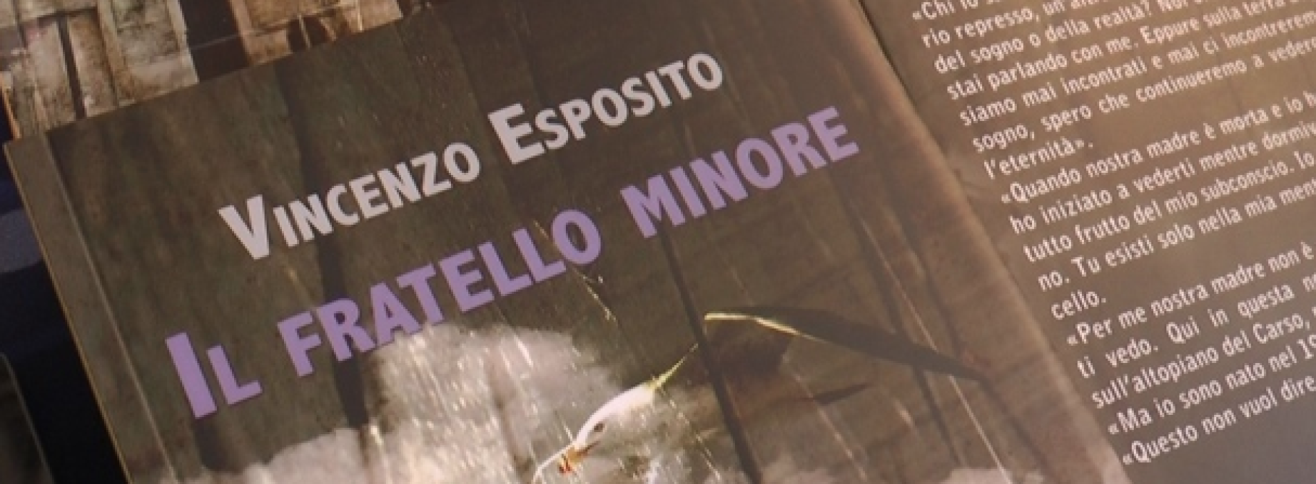 Il fratello minore. Il libro di Vincenzo Esposito