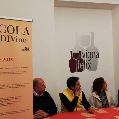 Formicola Borgo DiVino, un progetto che punta alle eccellenze