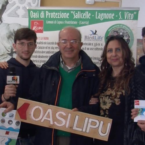 """Capua. Domenica è Festa della Lipu nell'Oasi """"Salicelle"""""""