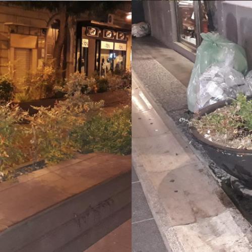 """La passeggiata in città, a Caserta anche il """"verde"""" è… al verde"""