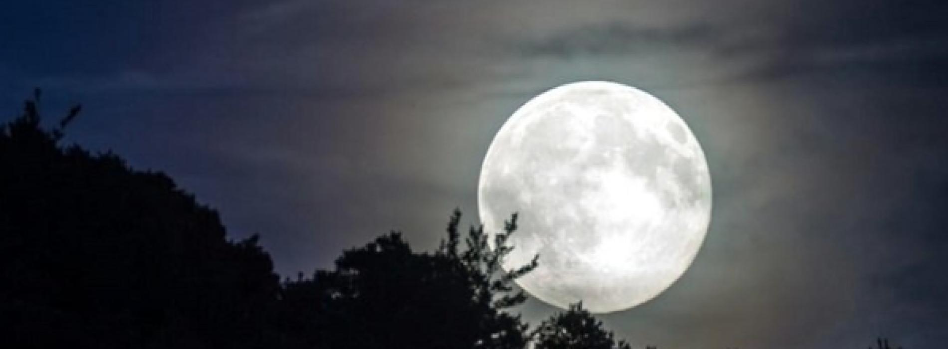 Guarda che luna, stanotte sembra avere la faccia di Marcoffio