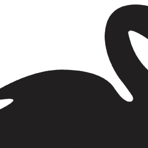 Libri in Redazione. Il cigno nero di Nassim Nicholas Taleb