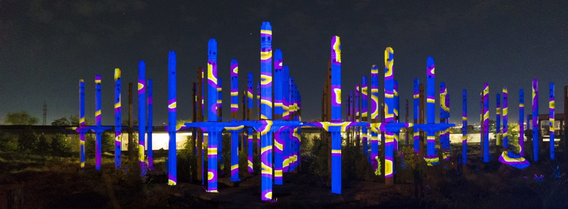 Lighting Flowers, i fiori luminosi di Franz Cerami all'Università