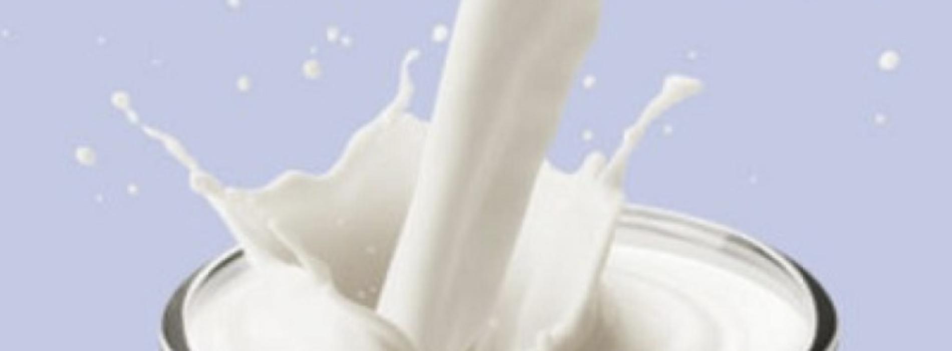 Primo giugno. World milk day, una tazza è un pieno di energia