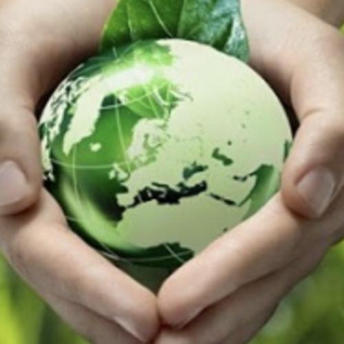 Giornata Mondiale dell'Ambiente. Vivere green è possibile!