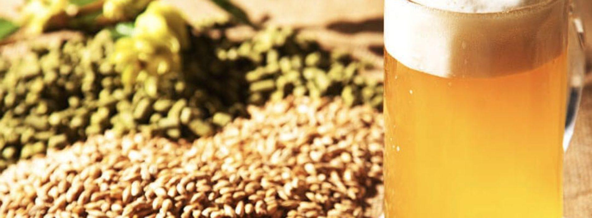 International Beer Day, Monda, gli effetti benefici sulla salute