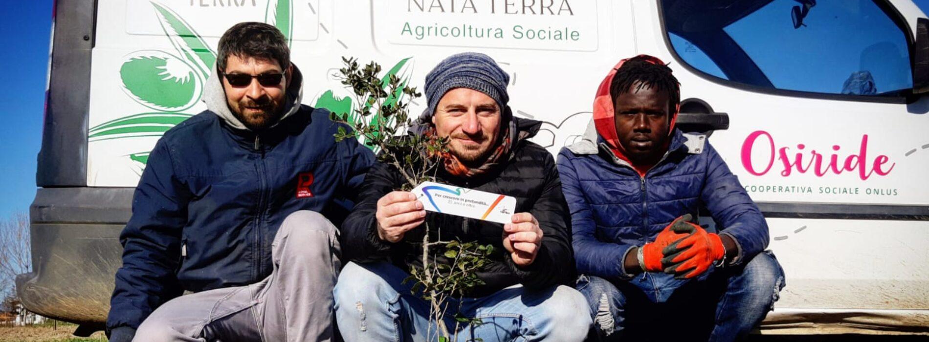 Nata Terra, prende forma a Cellole il progetto di agricoltura sociale