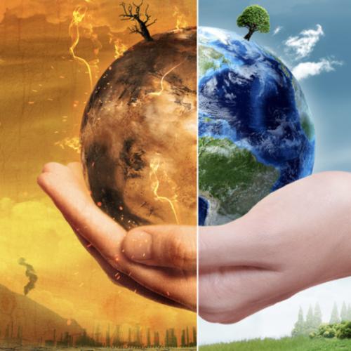 Caritas. Pandemia e biodiversità, seguito convegno in rete