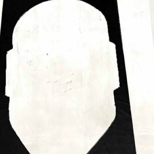 Chi l'ha vista? Scomparsa l'afro-maschera dell'artista Tolosa