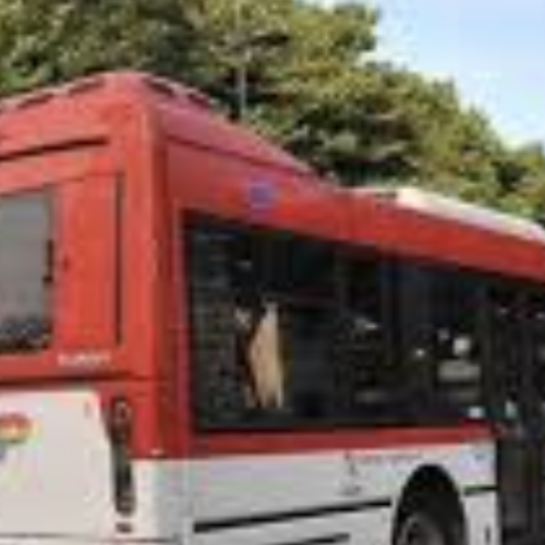 Caserta. Nuovi autobus della Clp, domani la presentazione