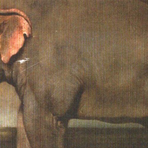 Un elefante a corte, quel fascino dell'esotico caro ai Borbone