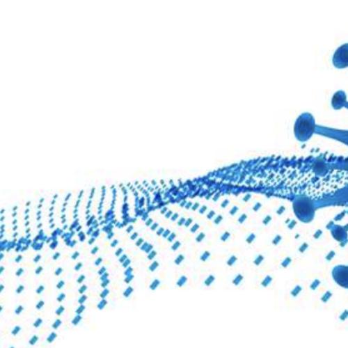 Paziente immunologico e Covid-19, un webinar per discuterne