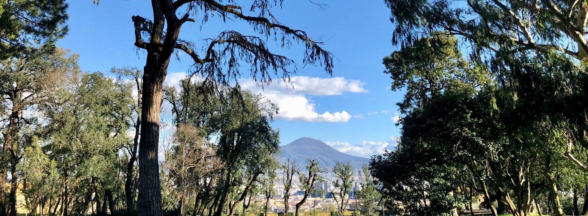 Cambia colore la Campania. Riapre il Bosco di Capodimonte