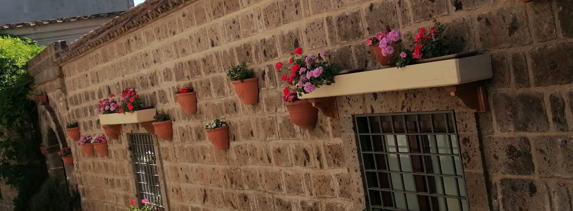 Rinascono a Casertavecchia i fiori, il Borgo riparte dai colori
