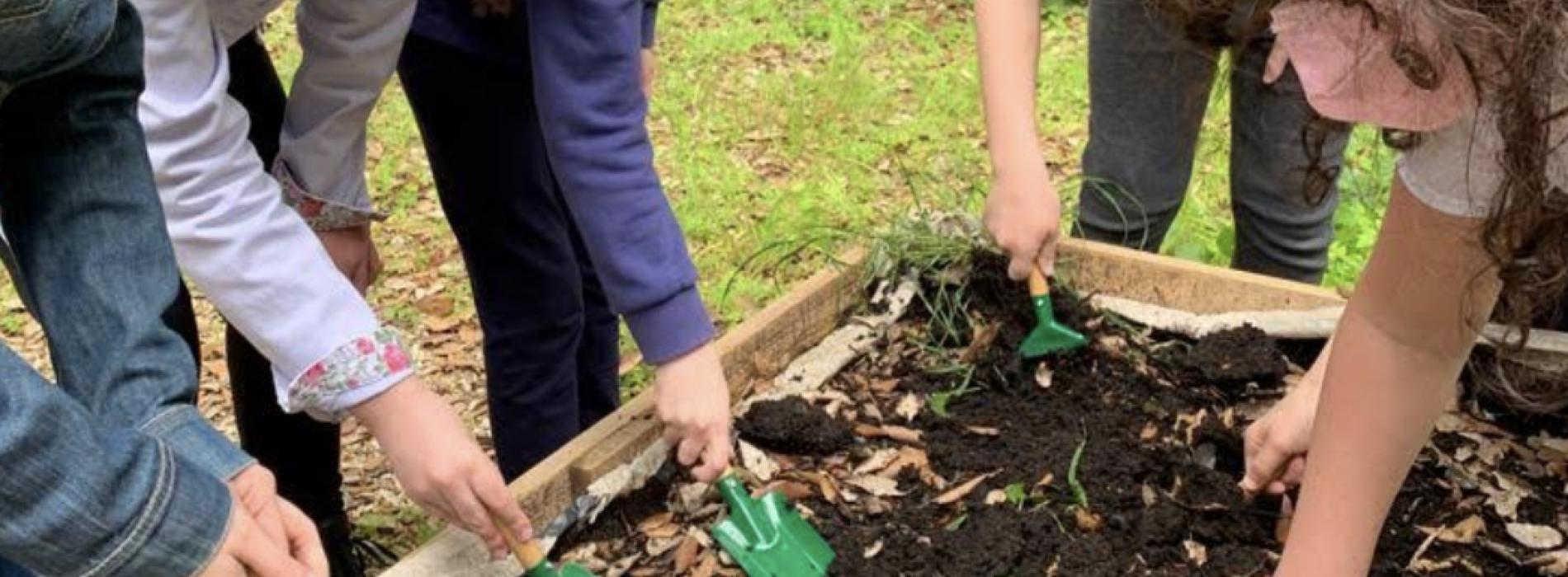 """Reggia. Progetto Horticultura, i bambini """"coltivano"""" il museo"""