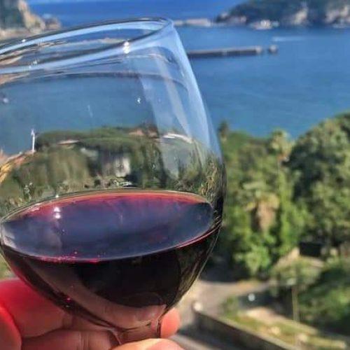 Campi Flegrei, il jazz porta nella vigna le 4 giornate di Napoli