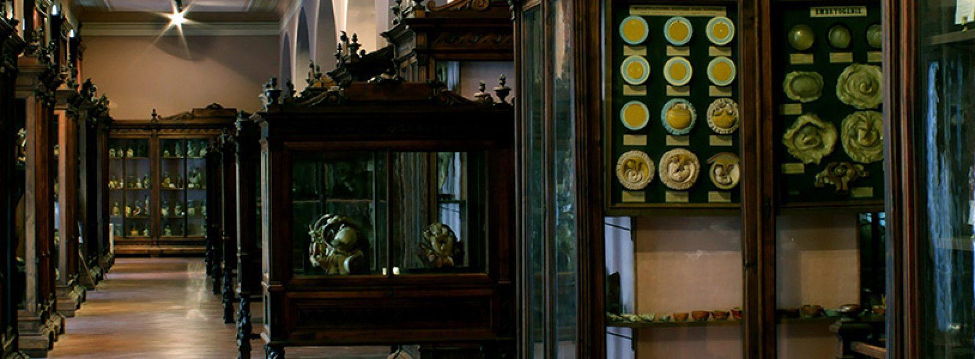 Giornate Europee, apertura straordinaria al Museo Anatomico